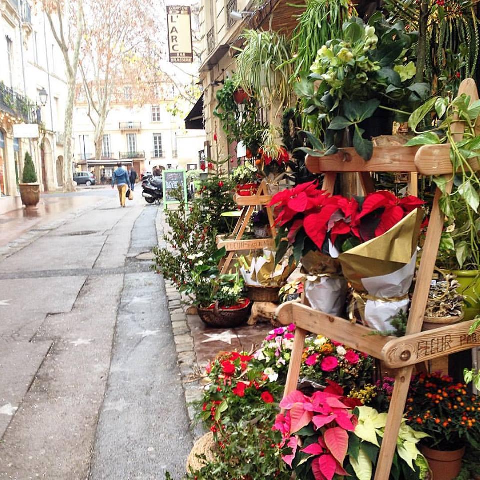 rue du palais eterieur Boutiques fleur benjamin jean fleuriste montpellier