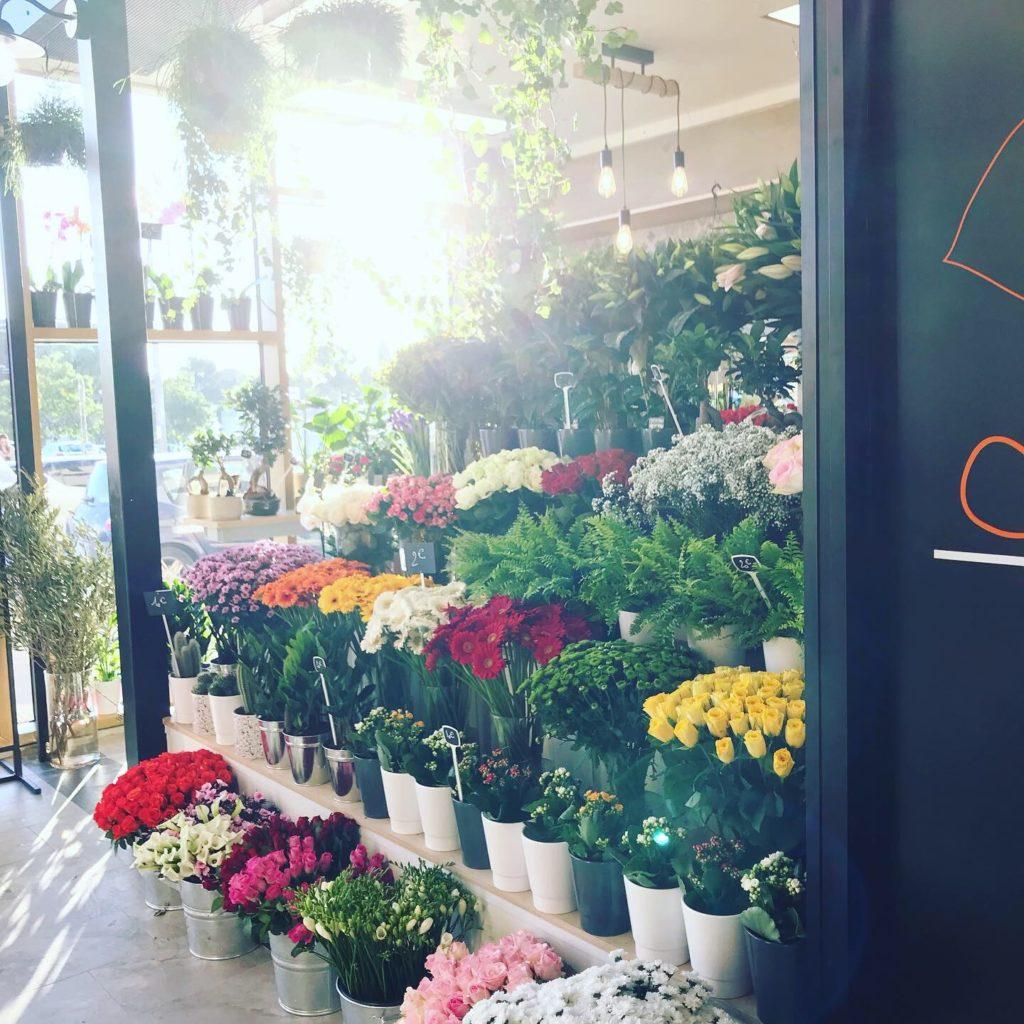 devanture halle plaza Boutiques fleur benjamin jean fleuriste montpellier