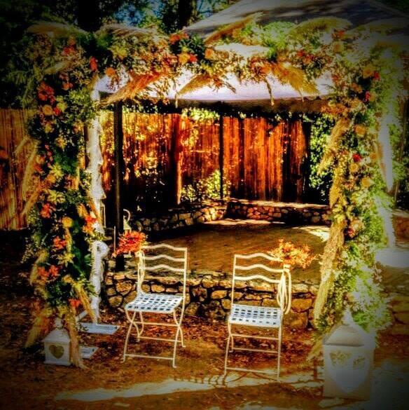 arche nature et champetre  fleur par nature montpellier