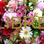deuil du fleuriste deuil livraison de fleurs a domicile fleur par nature montpellier